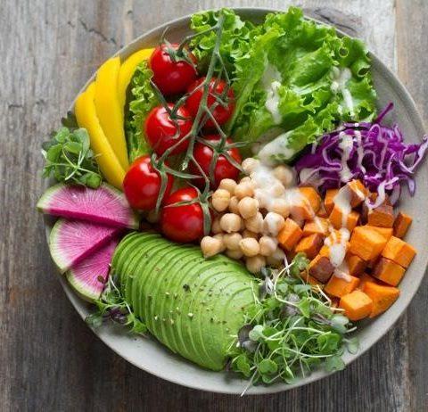 Best Vegan Probiotics