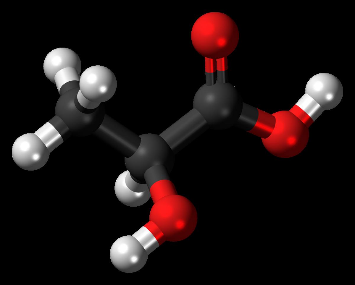 Is Lactic Acid Vegan?
