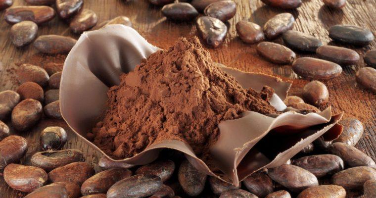 Is Dark Chocolate Vegan?